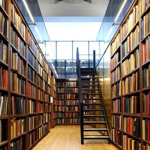 Библиотеки Бирюсинска